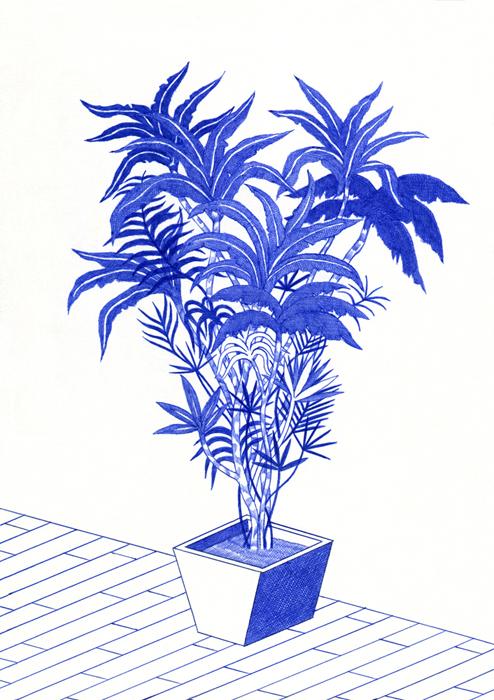 http://www.kevinlucbert.com/files/gimgs/70_plante2_v2.jpg